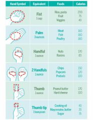 hand   food sizes portions